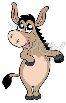 burros+graciosos+imagen3
