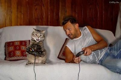 homnre+y+gato+jugando3