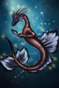 foto de dragon