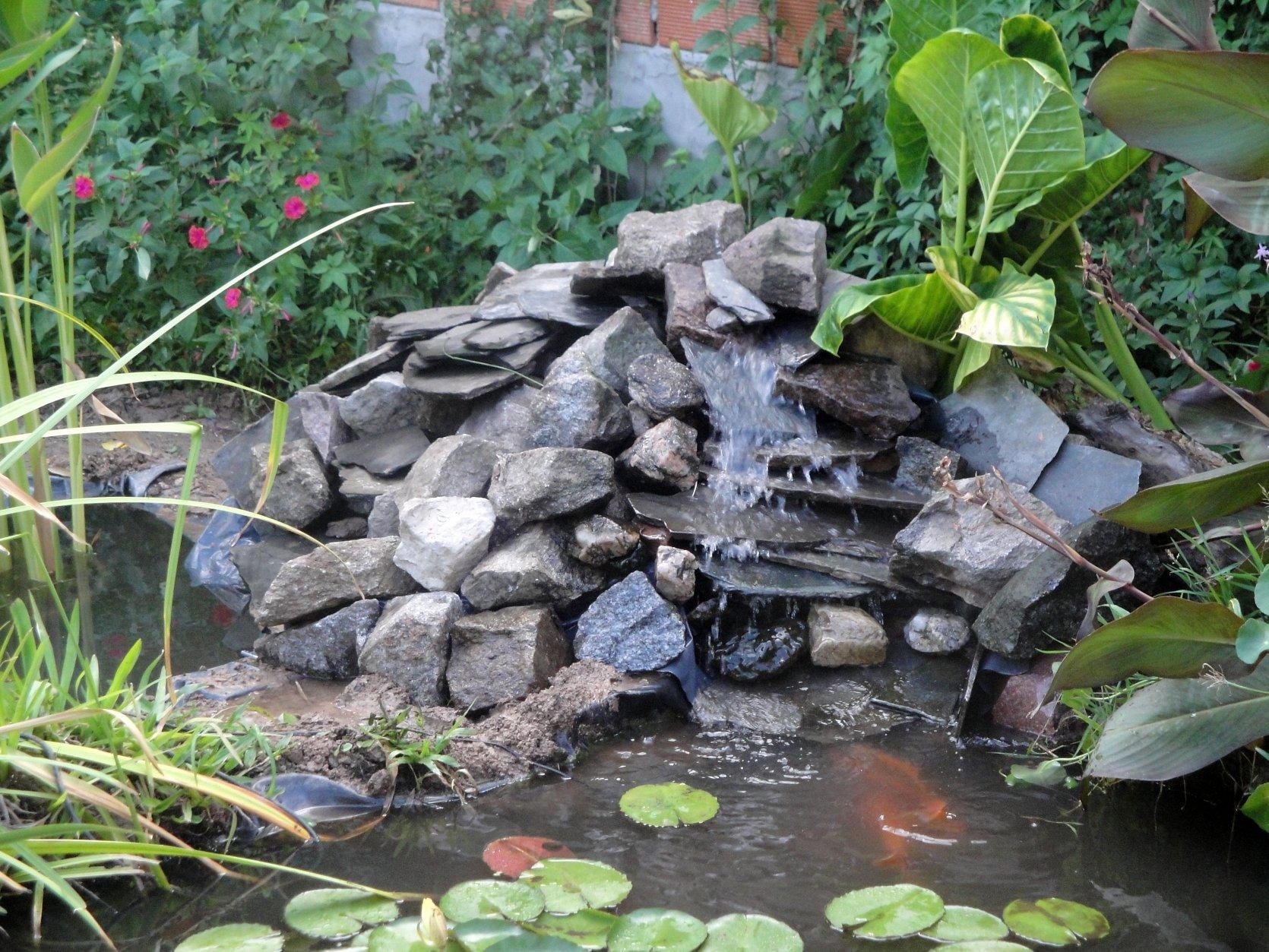 Hermosos estanques de peces con cascadas Descargar imgenes gratis