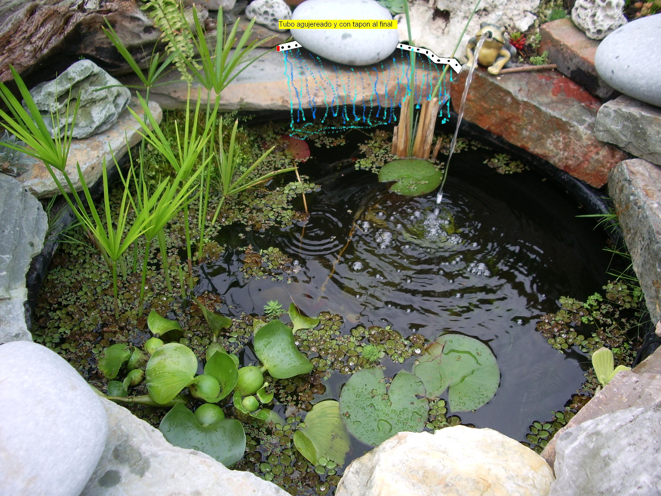 Pin De Glory Huertas En Ideas Para Mi Jardin Pinterest Pond - Cascada-estanque