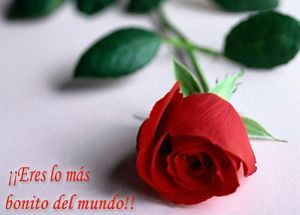 Frases de Amor, Imagenes y Fotos 6