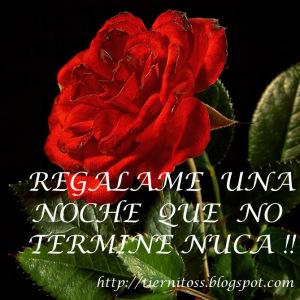 imagenes-de-rosas-rojas-con-frases-de-amor-ROSA-ROJA
