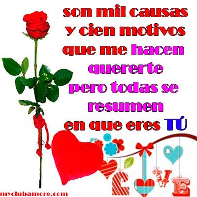 Amor-de-Rosas