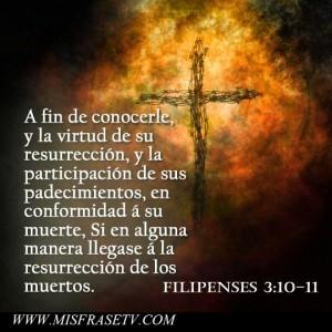 frases-de-jesus-para-reflexionar-205755_10151653189550830_1602746279_n