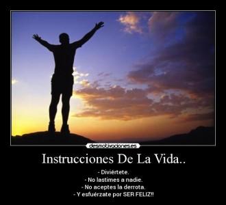 Instrucciones de la vida