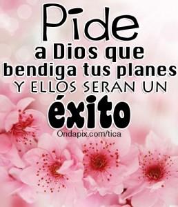 Pide a dios que bendiga tus planes y ellos seran un exito