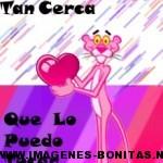 pantera-rosa-del-amor-150x150