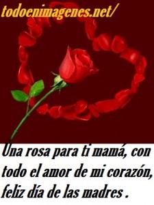 rosas-corazon11