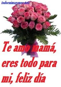 rosas-rosas-300x279