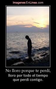 11379_no-lloro-porque-te-perdi__th