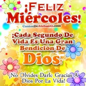 feliz-miercoles-feliz-miercoles-111412.jpg.opt349x349o00s349x349