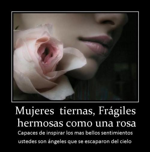 Imágenes Con Frases Para Las Mujeres Para Facebook Descargar