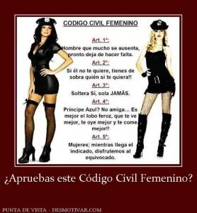 176635_apruebas-este-codigo-civil-femenino