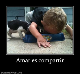 78239_amar-es-compartir