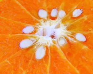 semillas de naranja para el dolor de cabeza