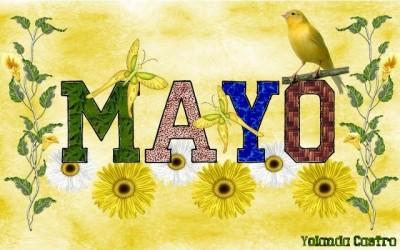 Imagen-Del-Mes-De-Mayo-Con-Aves-y-Flores