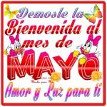mayo2-150x150